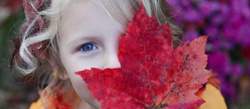 Herbstferien im KJR